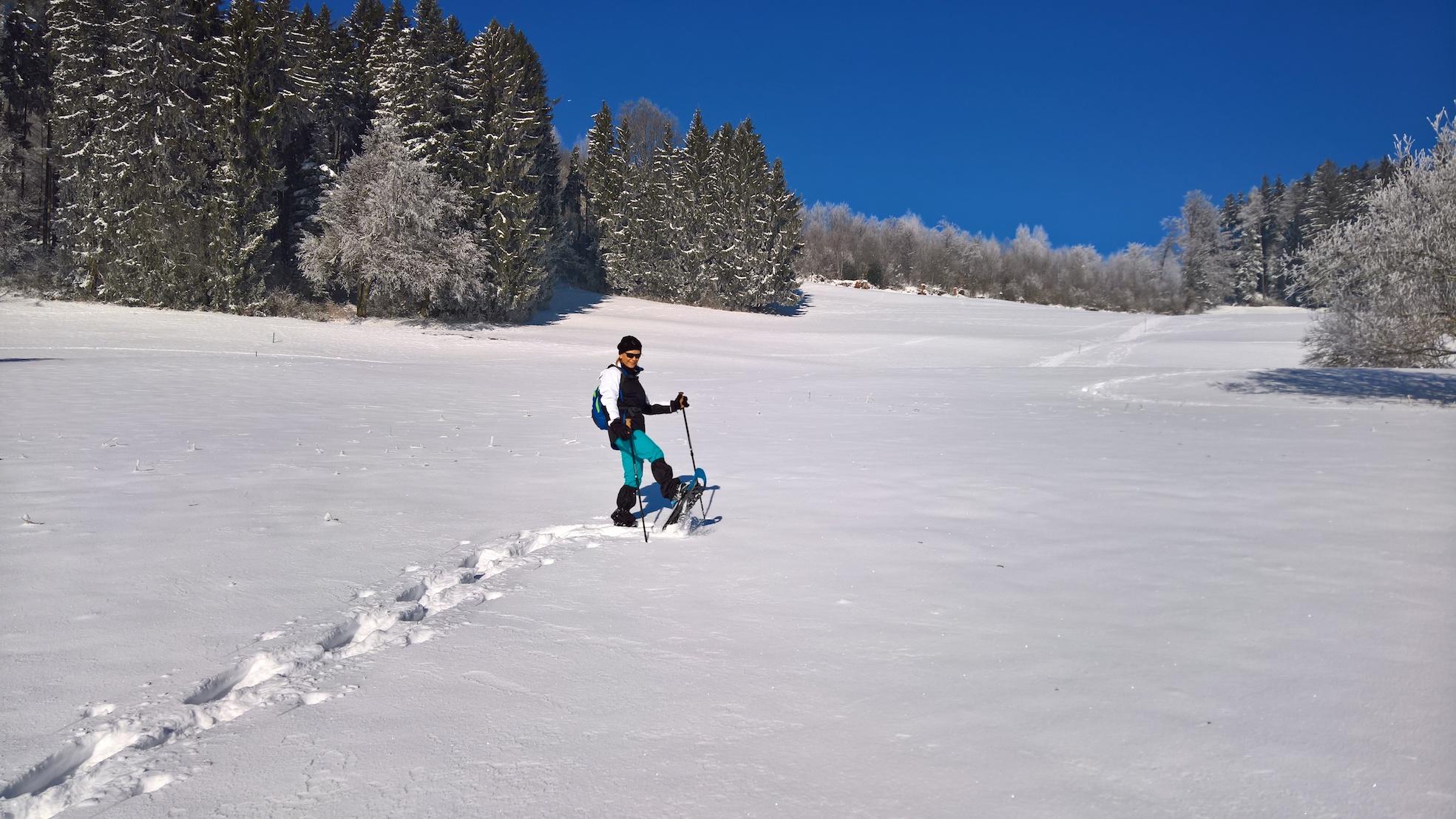 Schneeschuhtour von Bäretswil zum Berggasthaus Rosinli